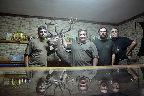 """Un ciervo y cuatro """"venaos"""""""