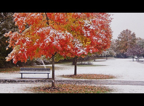 First Fall Snow