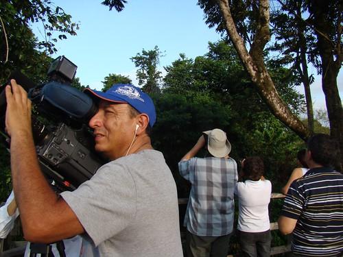 Migración Gavilanes 2010