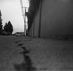And another way to look at time is this: (QsySue) Tags: street blackandwhite brick wall pavement 120film crack sidewalk powerlines wires orangecounty bikeride huntingtonbeach expiredfilm developedathome anscopanda kodaktrixpanfilm 620filmcamera thisfilmexpiredin1973 iwasthreeyearsoldin1973 120filmrespooledonto620spool titleisalaurieandersonlyric
