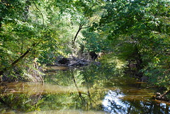 Rock Creek on 10/10/10