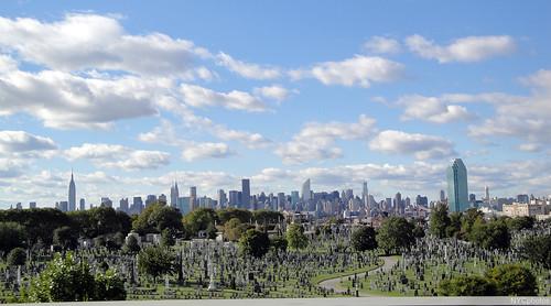 NYC skyline & L.I.C