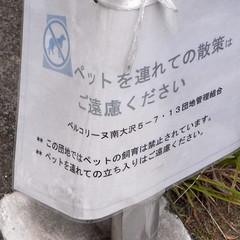 Bellecolline Minami-Ōsawa 15