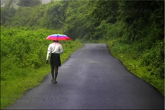 Monsoon (www.senyphotography.com) Tags: india colors canon eos kerala monsoon roads f4 tamilnadu unmbrella 24105l seny 550d valpara rubberised malakkapara