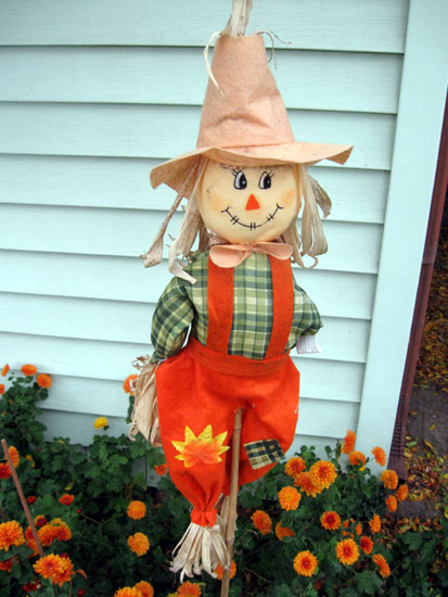 Scarecrow in the Marigolds