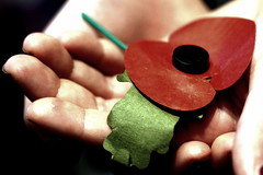 318/365: Remembrance Sunday