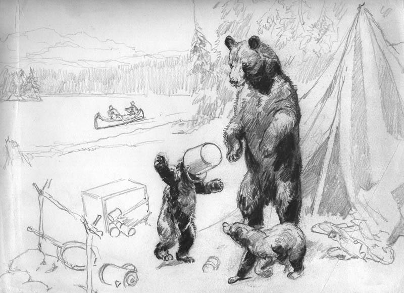 5-4 bear sketch