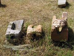 sculptures (Linda DV) Tags: africa travel canon geotagged ancient ruin ethiopia archeology axum 2010 aksum powershots5is lindadevolder northernstelaefield