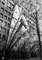 Reaching Skyward (cazphoto.co.uk) Tags: toronto canada film monochrome architecture 1999 prints canoneos100 ilfordfp4 commercecourt iso125 arps architecturebydesign associatehip
