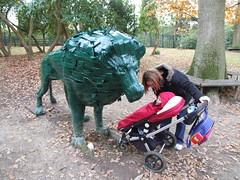 Tilgate Park - Lion