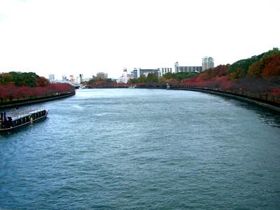 桜紅葉 大川