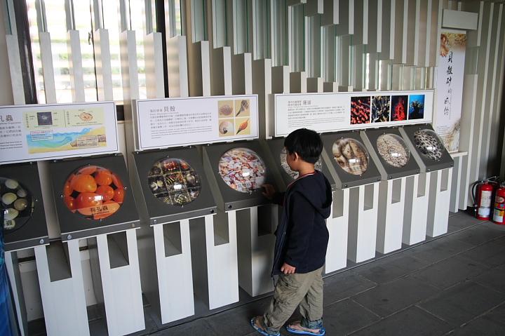 砂島貝殼砂展示館008