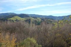 Santa Ynez photo