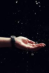 chove chuva.... pressione L e veja no lightbox... !Explore! (Ana Pitteri) Tags: life shadow luz nature water beauty rain gua brasil photo drops agua nikon waterdrop rainyday bokeh sopaulo natureza chuva sombra drop explore beleza waterdrops dropwater diachuvoso d40 mygearandme