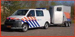 Dutch Mounted police. (NikonDirk) Tags: horse holland netherlands dutch vw truck volkswagen nikon foto cops nederland police cop mounted groningen unit politie horsetruck hulpverlening nikondirk 4vhs37