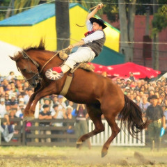 Gente 'el oficio... (Eduardo Amorim) Tags: horses horse southamerica caballo uruguay cheval caballos cavalos prado montevideo pferde cavalli cavallo cavalo gauchos pferd hest hevonen chevaux gaucho  amricadosul montevidu hst uruguai gacho  amriquedusud  gachos  sudamrica suramrica amricadelsur  sdamerika jineteada   americadelsud gineteada  americameridionale semanacriolla semanacriolladelprado eduardoamorim iayayam yamaiay semanacriolladelprado2010
