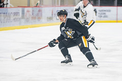 "Pens_Devolpment_Camp_7-1-17-11 • <a style=""font-size:0.8em;"" href=""http://www.flickr.com/photos/134016632@N02/35276784710/"" target=""_blank"">View on Flickr</a>"