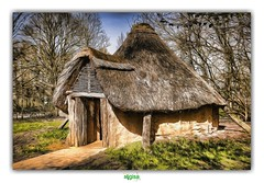 HOME IS A FEELING (régisa) Tags: home maison house asnapio villeneuvedascq préhistoire prehistoric parc archéologique habitat habitation
