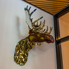 Party Animal (Matthew Warner) Tags: 2017 art d7100 inspiedbytam jerrybennett matthewwarner museum museumdistrict nikon photography summer tacoma tacomaartmuseum travel washington washingtonstate geo:lat=47246973333333 camera:model=nikond7100 geo:lon=122435565 exif:make=nikoncorporation geocity geostate geocountry exif:isospeed=400 exif:model=nikond7100 geolocation exif:lens=1801400mmf3556 exif:focallength=23mm exif:aperture=ƒ38 camera:make=nikoncorporation