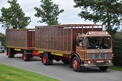 [IRL] AEC Mandator ZV 83250 (truck_photos) Tags: vintage rally lorry 2010 aec fingal cattletruck irishtrucks