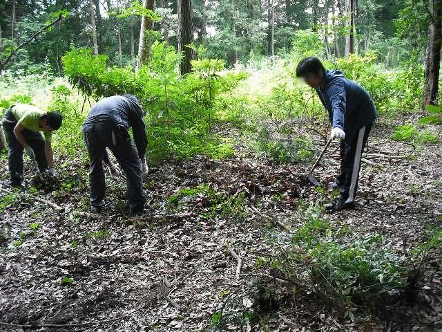 100706 森林整備1