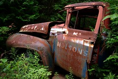 Beer Truck (Mr Perry) Tags: ford beer rust 1950s oxidation beertruck molsons sigma1020mm wreckingyard mcleans intheweeds pentaxk10d