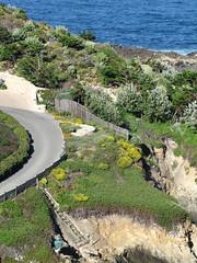 IMG_2153 (BelovedMuerto) Tags: ocean beach cliffs pch pacificocean californiacoast marinelayer rt1