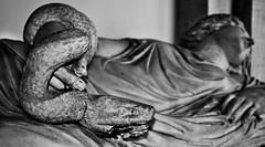 Cleopatra (gcarmilla) Tags: sculpture vatican statue snake statua cleopatra vaticancity ptolemaic serpente morso cittadelvaticano serpe ptolemaicdinasty
