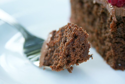 chocolate_sourdough_cake3