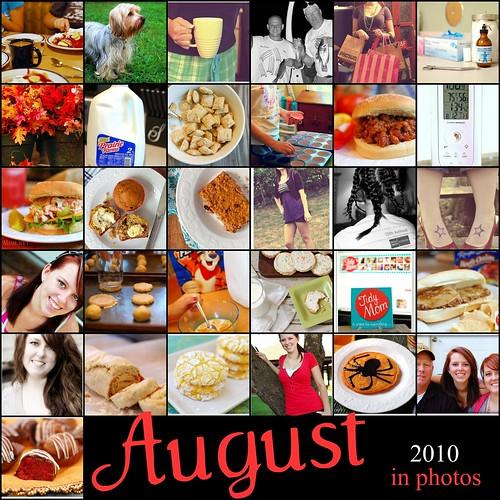 August 2010 365 Mosaic