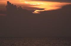 Sunset paddling (2 Funky) Tags: sunset sea summer sky orange bird water silhouette japan clouds relax fuji board paddle lonely  kanagawa hayama     shonan mtfuji p10       gxr