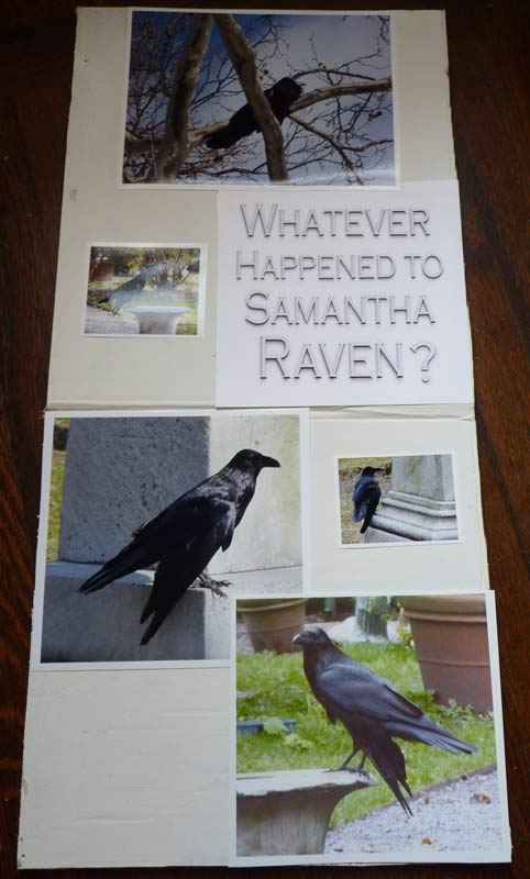Whatever Happened to Samantha Raven