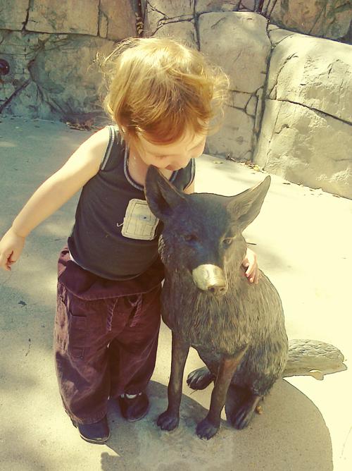 cedar&wolf