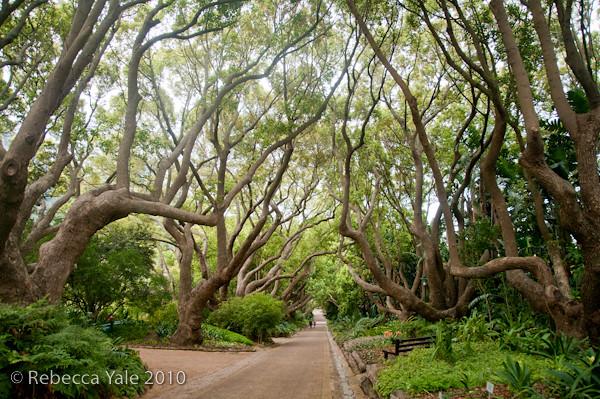 RYALE_Cape_Town-163