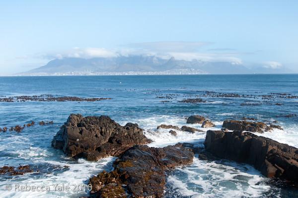 RYALE_Cape_Town-243