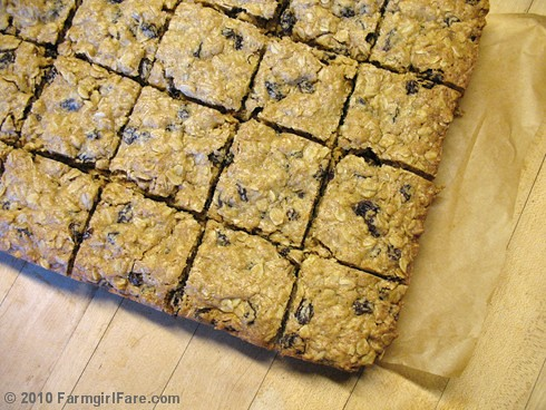 Whole Grain Oatmeal Raisin Cookie Bars 2