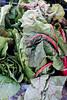 (ion-bogdan dumitrescu) Tags: lebanon beirut bitzi mg5650 ibdp gettyvacation2010 ibdpro wwwibdpro ionbogdandumitrescuphotography