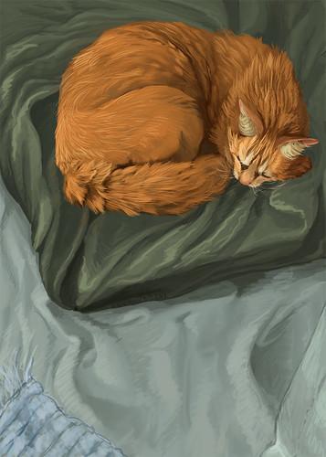 Reddogdied - Sleeping WIP