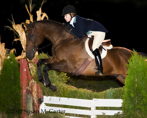 Joy Crompton of Farmington Hunt with Seamus in the Masters Class at the Warrenton Horse Show