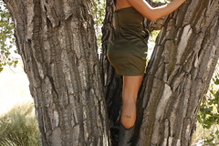 (Terin Talarico) Tags: light summer tree girl climb colorado afternoon dress boots branches september overexposed redlipstick fleeting twigs blownout thornton 2010 ashli