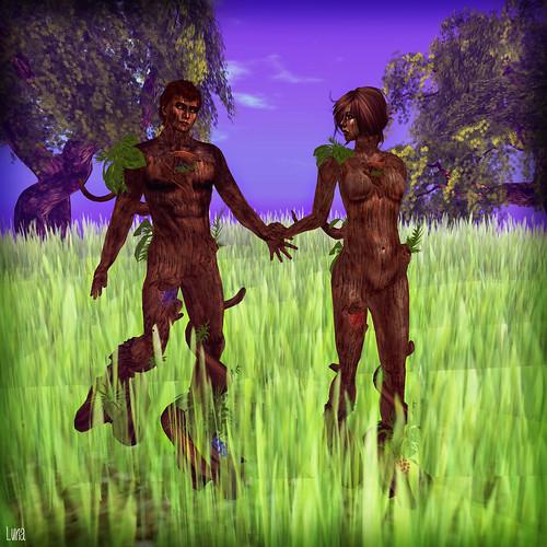 we r tree people