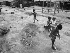 Kids of Acampamento 25 anos (hannanik) Tags: boy camp brazil tree latinamerica girl brasil kids movement doll village play protest social row acampamento squat plastic hut stump land conflict shanty eucalyptus mst