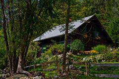 House in the wood (Karmen Smolnikar) Tags: wood flowers trees house forest fence slovenia slovenija