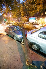 IMG_4186 (tud5000) Tags: park new york nyc newyorkcity newyork storm rain brooklyn destruction parkslope gothamist tornado slope
