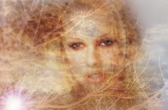 Tu rostro de niebla ya trota en mi cielo hasta ser brisa... (conejo721*) Tags: sol argentina rboles amor cielo palabras mardelplata ramas poesa poema sentimientos rostrodemujer conejo721