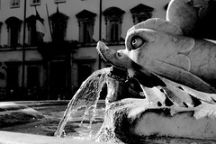 . (Nicol Panzeri) Tags: blackandwhite bw fish rome roma fountain fontana biancoenero pesce piazzacolonna montecitorio canon450d nicopino