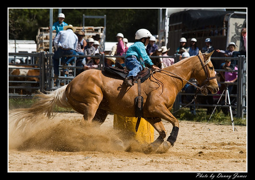 Stroud Rodeo - 18-09-2010 - 003 - Framed