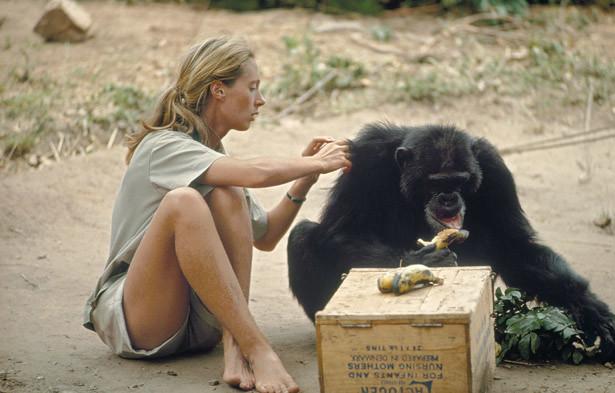 Jane Goodall & Chimp
