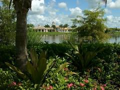 THAW_ 040596 (John Thawley) Tags: leica florida digilux2 sunday scenic villagewalk bonitasprings