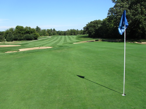Pine Meadow Golf Course Review, Mundelein, IL